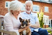 Retired Couple Sitting On Bench With Pet French Bulldog In Assisted Living Facility poster