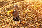 Cute Little Girl Playing With Fallen Golden Leaves. Happy Child Walking In Autumn Park. Beautiful Go poster
