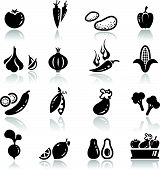Icons set Vegetable