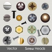 Vector Screw Heads