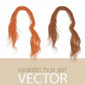 Vector Isolated Hair Set