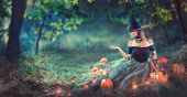 Halloween Witch with a carved Pumpkin and magic lights in a dark forest at night. Beautiful young wo poster