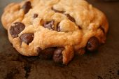 foto of chocolate-chip  - close up of freshly baked chocolate chip cookie - JPG