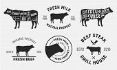Cow Emblems. Set Of 6 Cow, Beef Emblems And Posters. Vintage Style. Vector Illustration poster