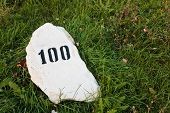 Mile Stone In The Grass