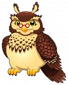 Funny owl. Cartoon and vector isolated character.