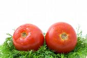Pair Of Ripe Tomatoes Over Some Dill