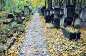 foto of polonia  - Old graves at historic Jewish cemetery Okopowa Street in Warsaw Poland - JPG
