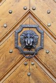 Lion door handle