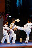 Young Korean Boys Taekwondo Kicking Demonstration