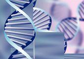 Hélice de ADN, antecedentes bioquímicos con filamentos Defocused, Eps10