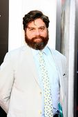LOS ANGELES - MAY 20:  Zach Galifianakis at the