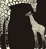 Inverse giraffe animal camouflage