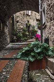 Rain in Dolceacqua, Liguria, Italy