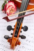 Classical violin  with dry rose on notes