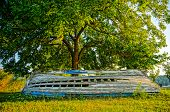 Old Derelict Wooden Boat Under A Tree. Hdr Picture