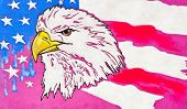 Original Pastel Paintings. Usa Eagle