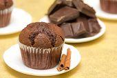 Rustic Chocolate Muffin