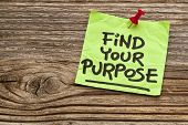 find your purpose  - motivational reminder - handwriting on sticky note against grained wood
