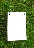 Clear White Paper On Grass