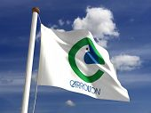 Carrollton City Flag