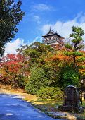 Hiroshima castle on the side of Otagawa river in autumn