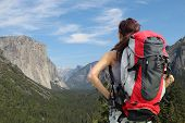 Travel In Yosemite Park