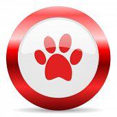 foot glossy web icon