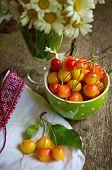 Sweet Cherries And Daisy Flowers