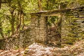Stone Doorway In The Woods Near Nonza On Cap Corse