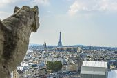 pic of gargoyles  - Gargoyle statue with paris aerial view in the background from Notre - JPG