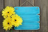 picture of peace-sign  - Blank antique teal blue sign with three bright sunflowers hanging on rustic wooden background - JPG