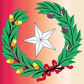 Texas Laurel Leaf And Star