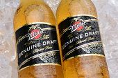 Miller Genuine Draft Bottles On Ice