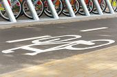 image of bike path  - Rent a bike - JPG