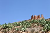 Ruins of kasbah in Morocco among prikcly-pear cacti