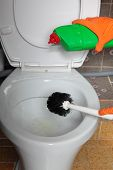 Gloved Hand Cleaning Toilet Bowl Using Brush