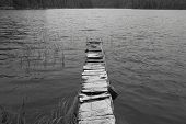 picture of dock a lake  - Wooden abandoned dock in a lake - JPG