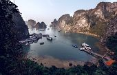 Tourist Junks in Halong Bay