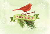 Vector watercolor Christmas background. Watercolor Christmas green branches and bird.