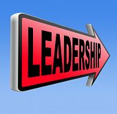 natural leader great leadership in business and other markets