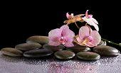 Spa Stones And Orchid Flowers With Reflection