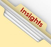 Insight word on a manila folder tab to illustrate analysis of information in a file breaking down important details to find meaning for your job, career or life