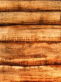 Wall   House  Log  Tree