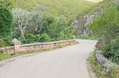 picture of fynbos  - Road bridge in the Montagu Pass over the Outeniqua Mountains between Herold and George - JPG