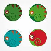 picture of chameleon  - illustration with stylized chameleon in the circle - JPG