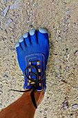 picture of fingers legs  - Leg and foot with blue five fingers sport shoes - JPG