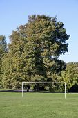Park Football