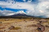 image of plateau  - Cotopaxi volcano over the plateau Andean Highlands of Ecuador South America  - JPG