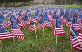 Flag-Memorial
